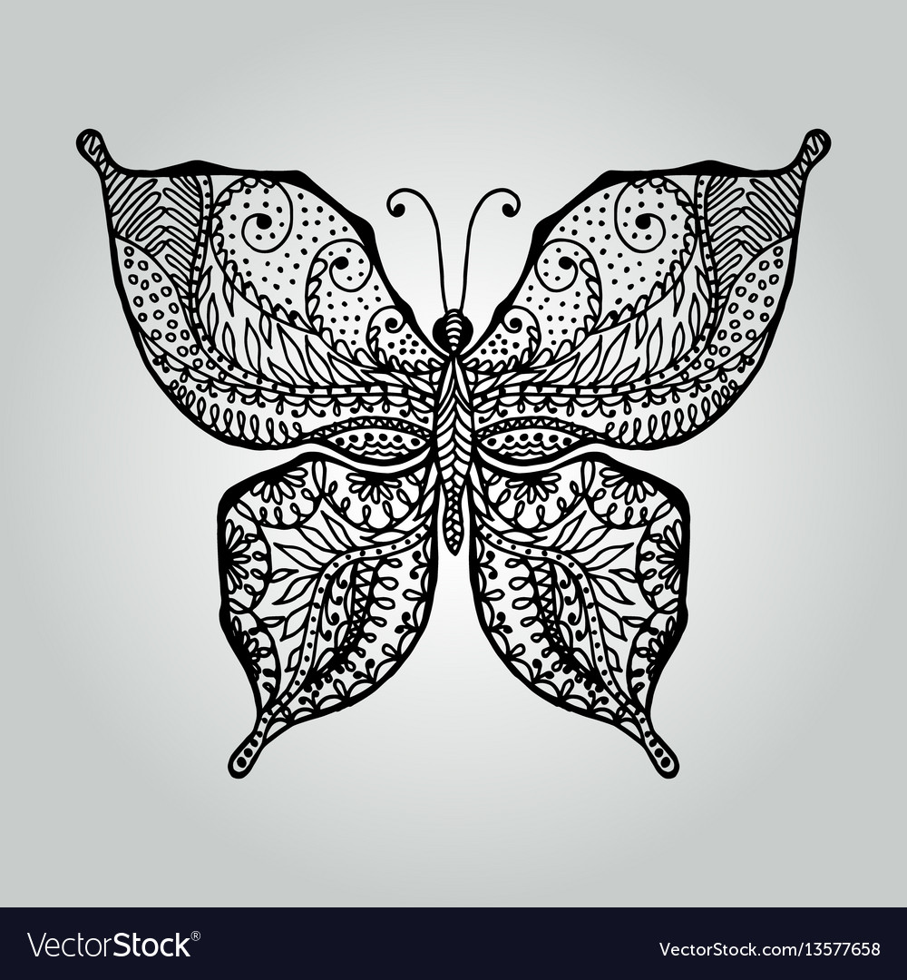 Abstract doodle butterfly wildlife collection vector image