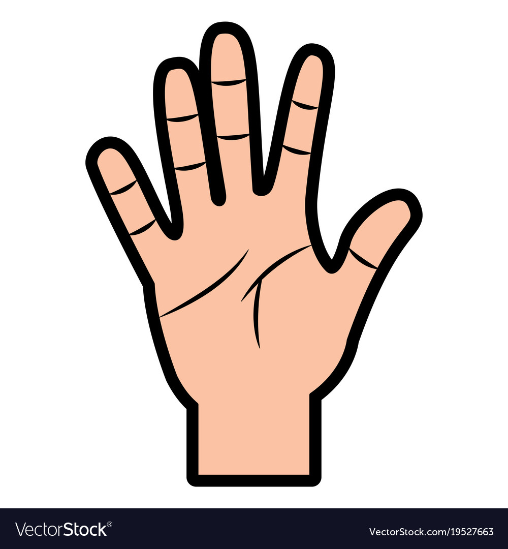 Opened Hand Palm Counting Fingers Number Five Vector Image