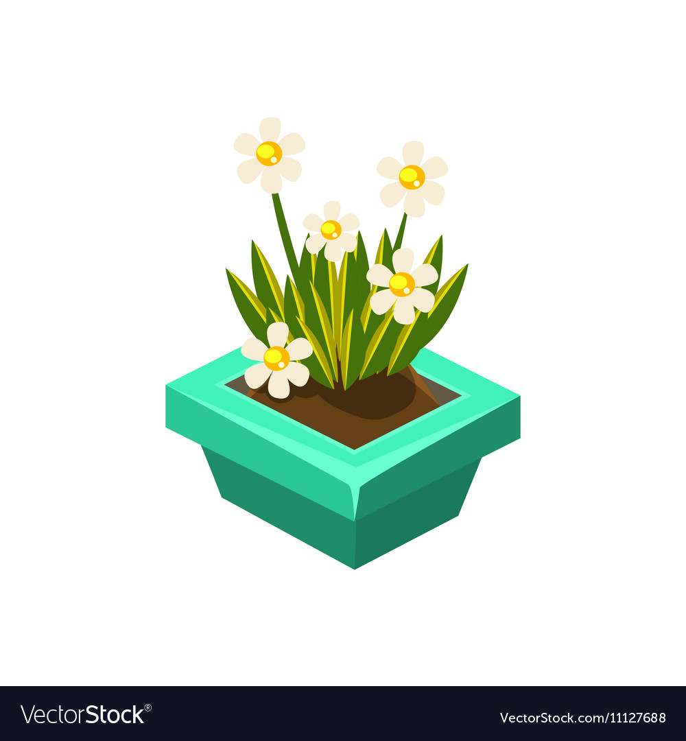Pot With White Flowers Isometric Garden Royalty Free Vector