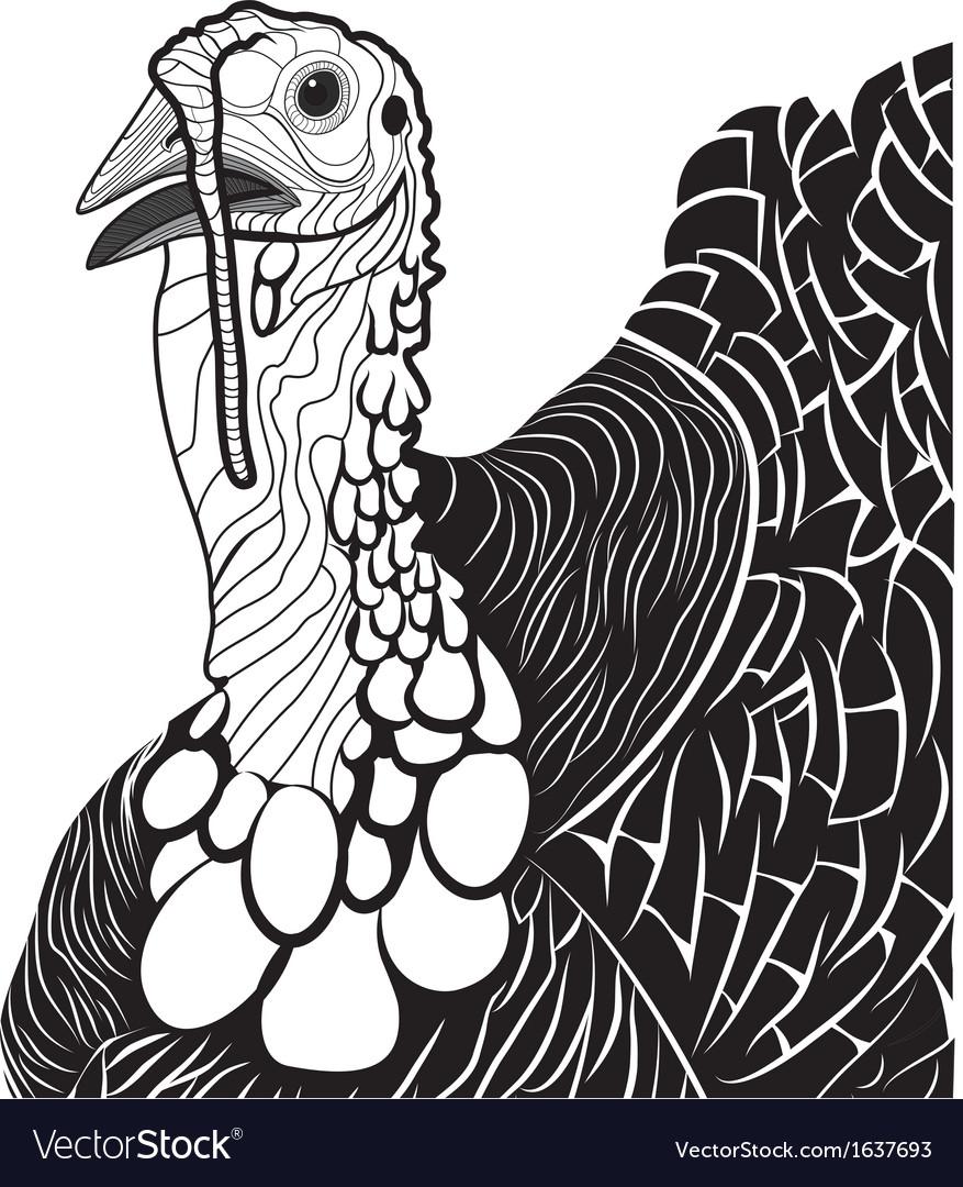 Turkey bird head as thanksgiving symbol vector image