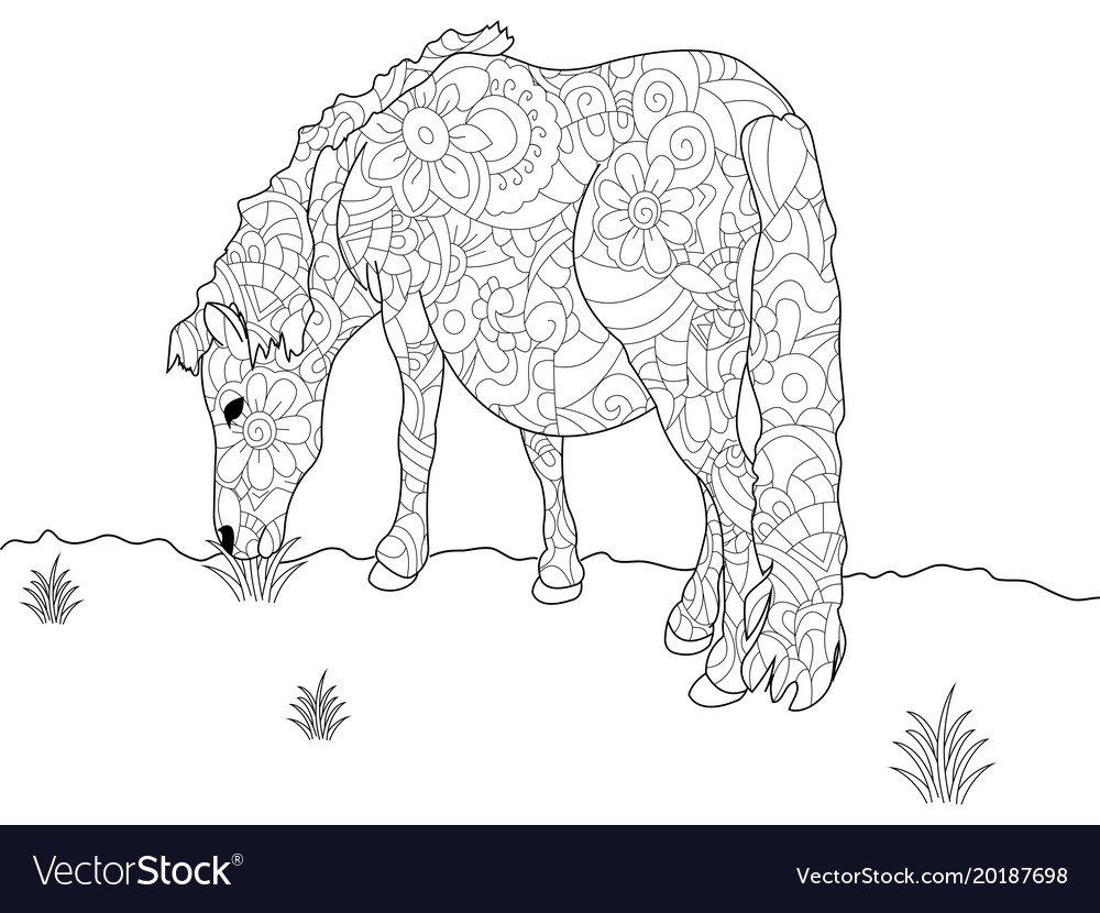 Anti stress coloring book pony horse doodle style Vector Image