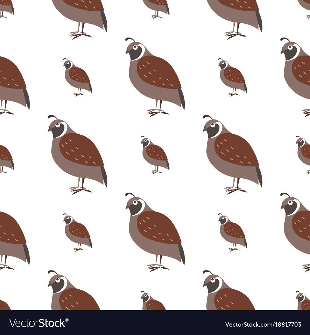 Cartoon quail seamless pattern on white