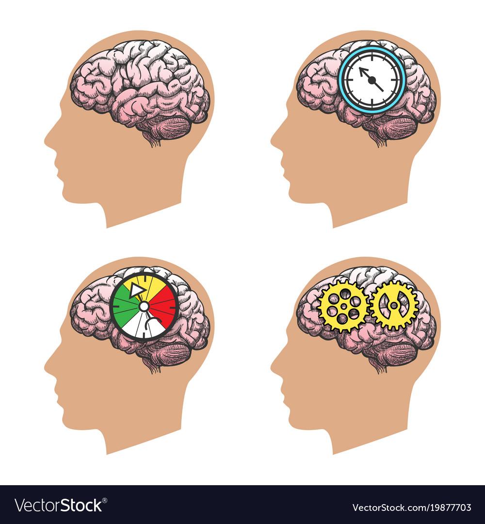Man head silhouette with brain