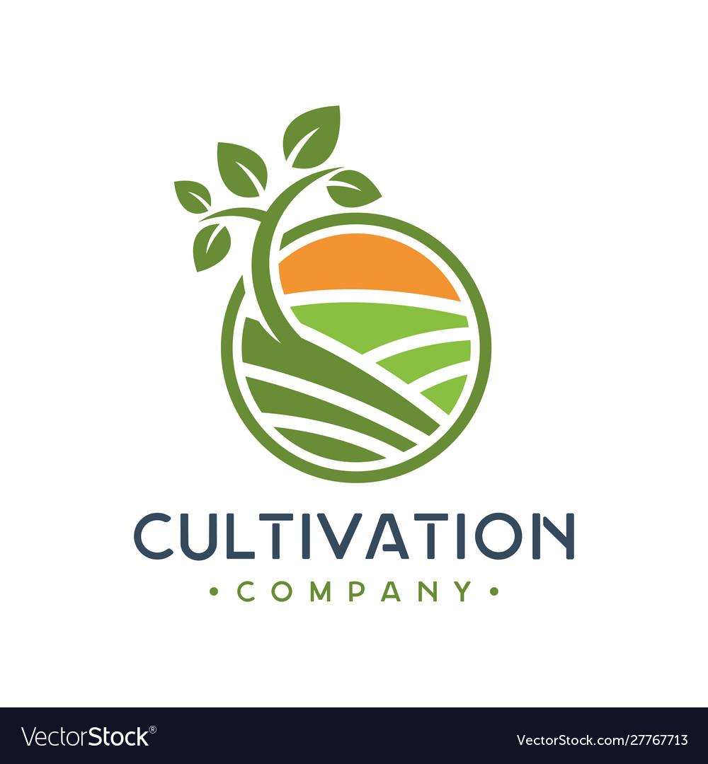 Green plant cultivation logo design