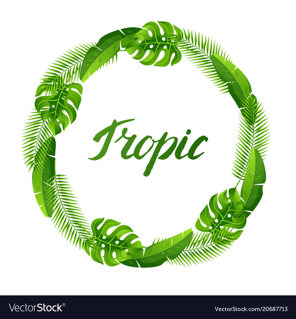 Wreath with tropical palm leaves exotic tropical