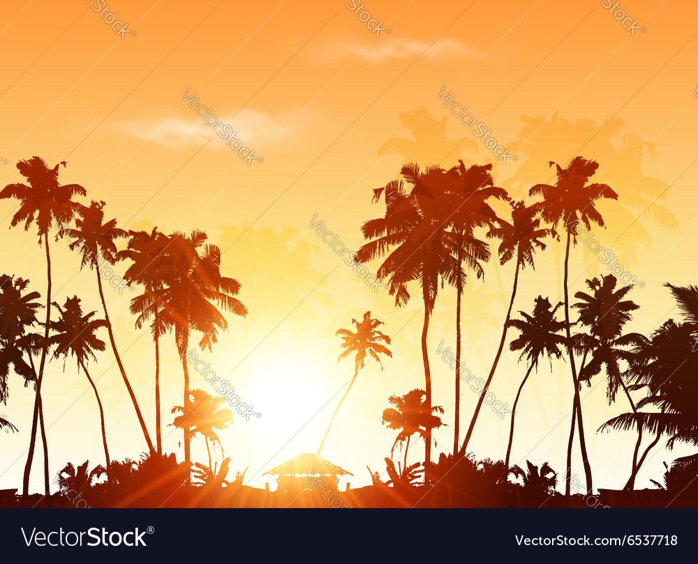 Palms silhouettes at orange sunset sky