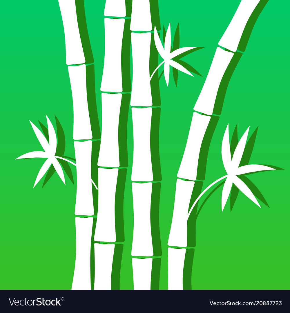 Blue green background with bamboo for banner