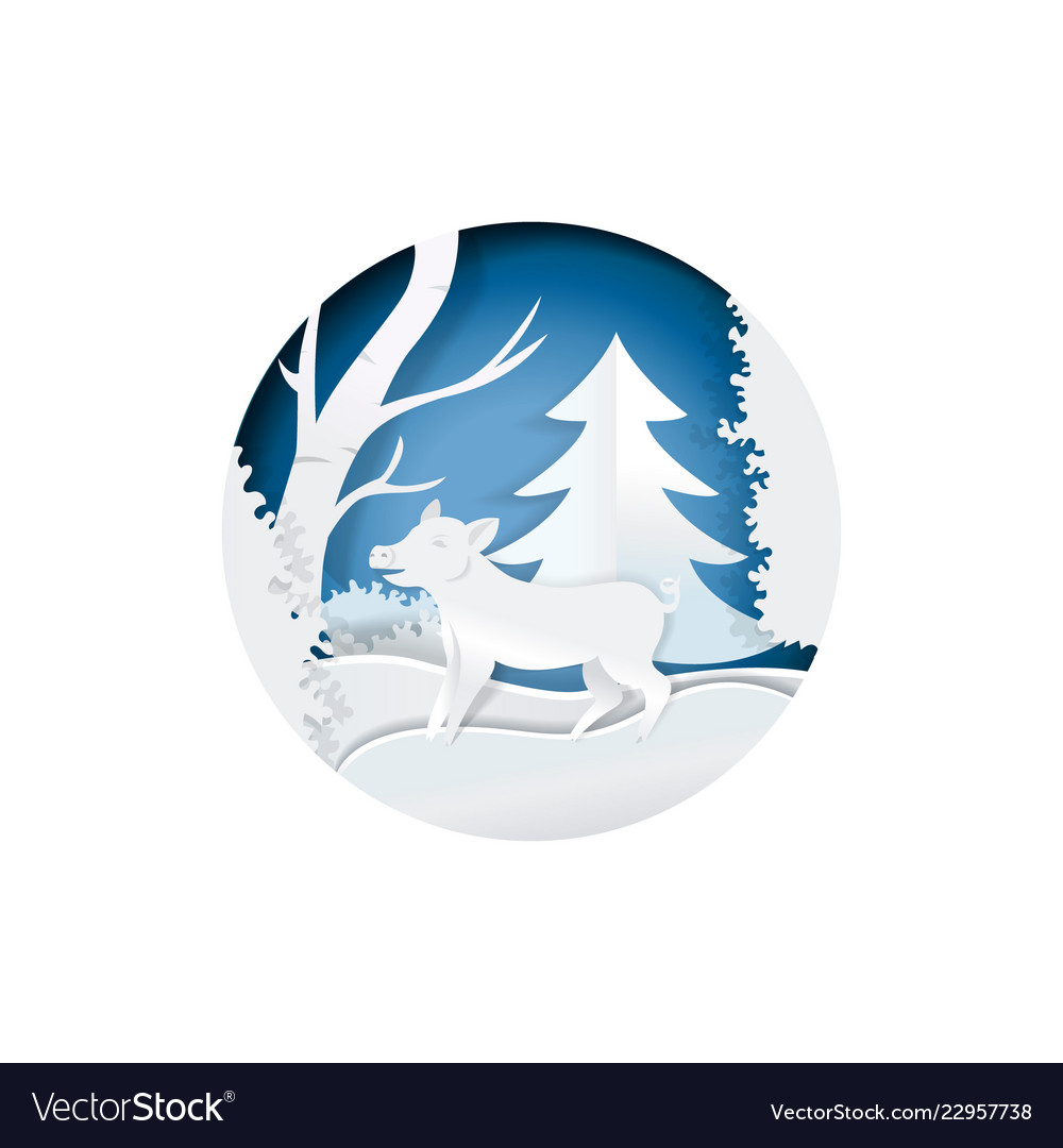 Boar in winter forest standing on snow