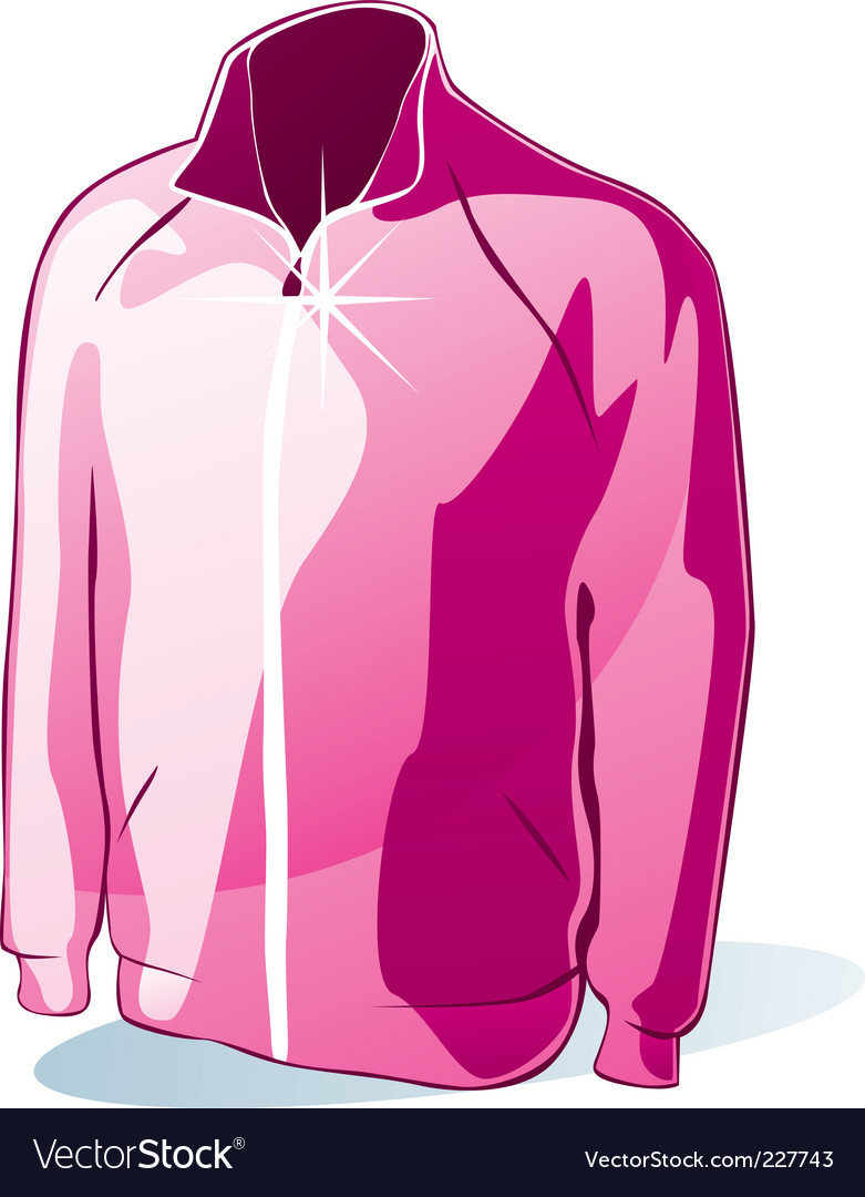 Isolated jacket vector image