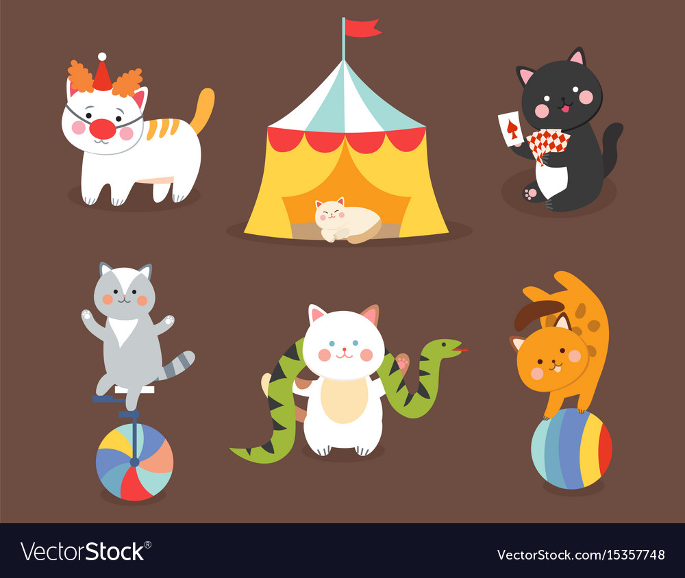 Circus cats cheerful for kids