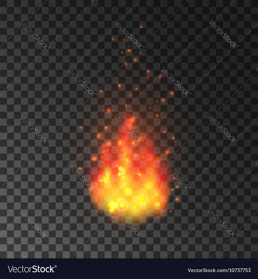 Burning fire with sparks Blazing flames vector image