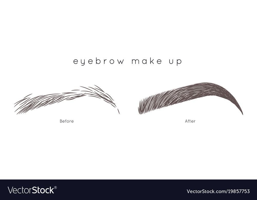 Eyebrow Tutorial Beautiful Brow Step By Step Vector Image