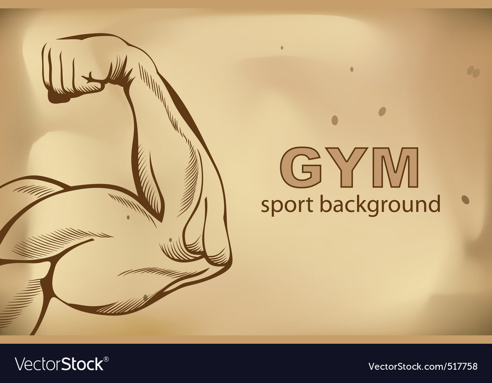 Arm muscles vector image