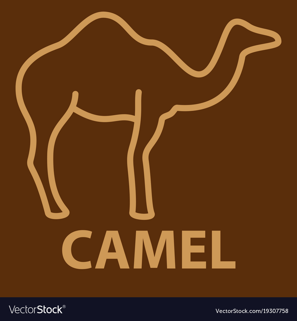 Camel icon in linear style