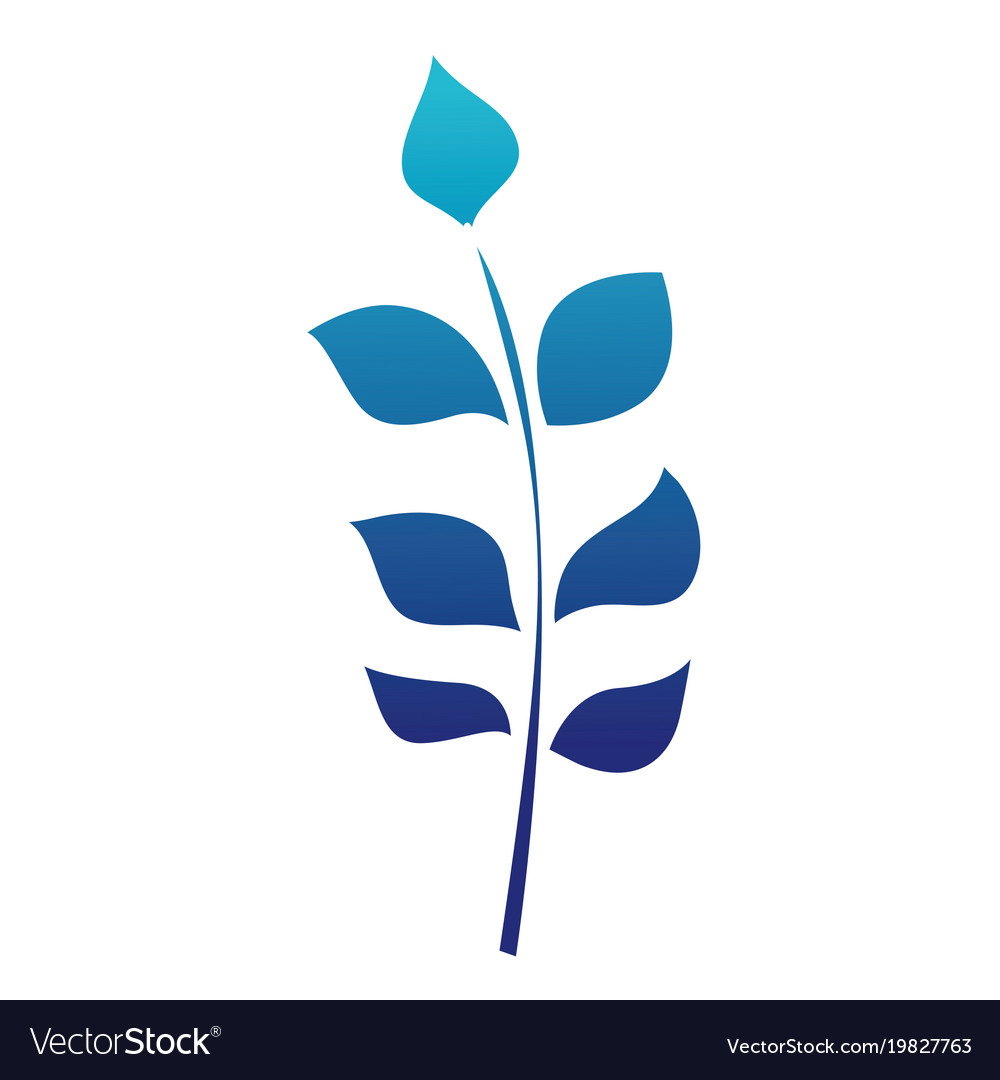 Blue silhouette nature branches with exotic leaves vector image
