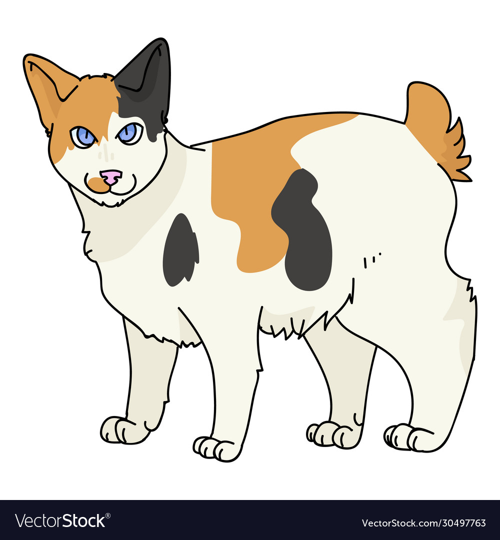 Cute Cat: Royalty-free stock vector illustration of an adorable kitty cat  laughing. #friendlystock #clipart #car… | Kitten drawing, Kitten cartoon,  Cute cat drawing