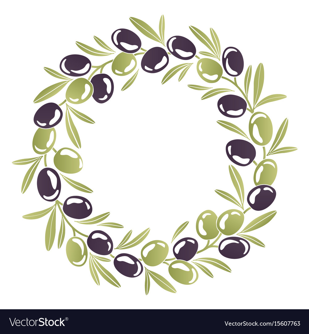 Round ornament wreath of black and green olives vector image