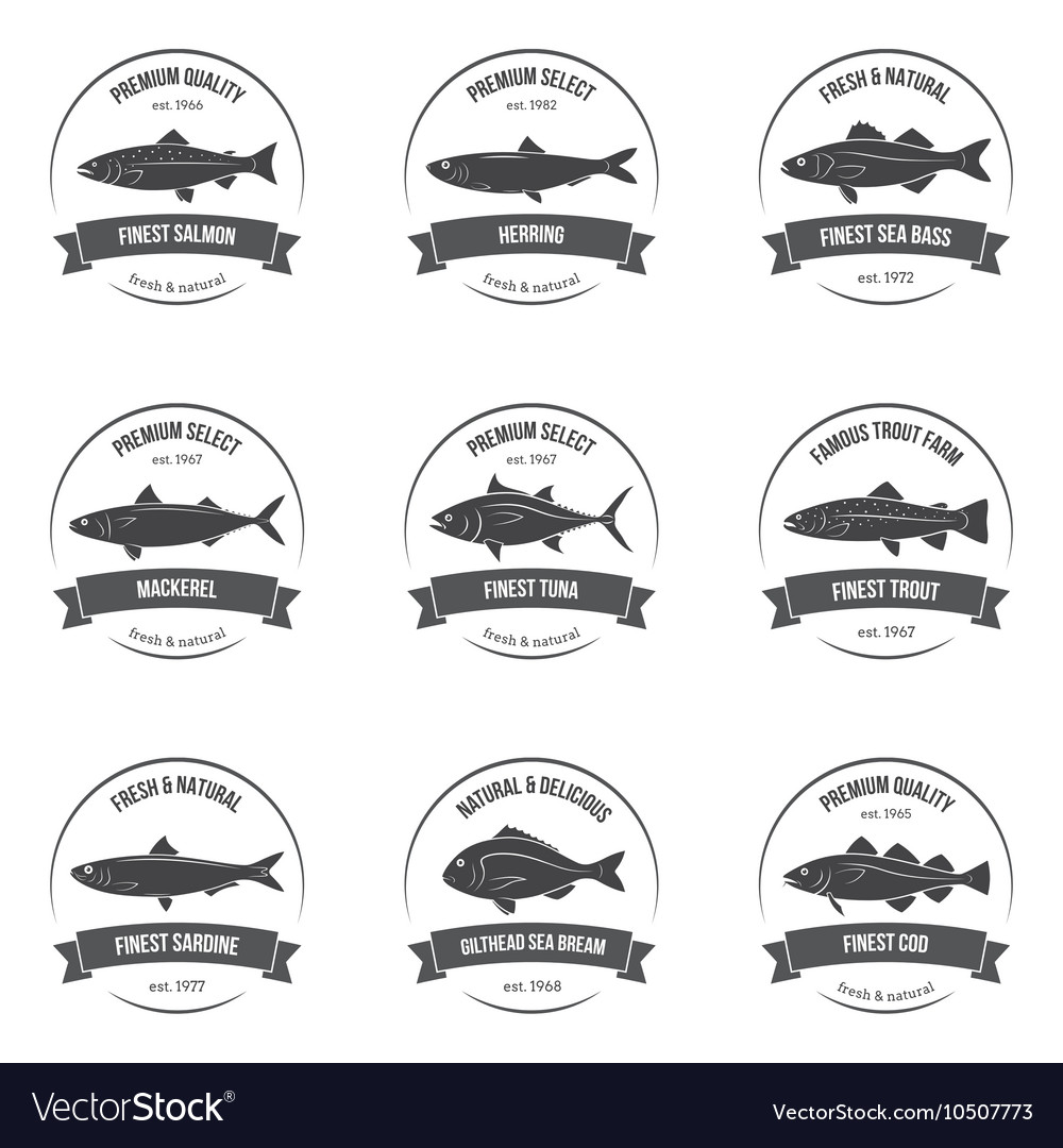 Fish silhouettes labels emblems vector image