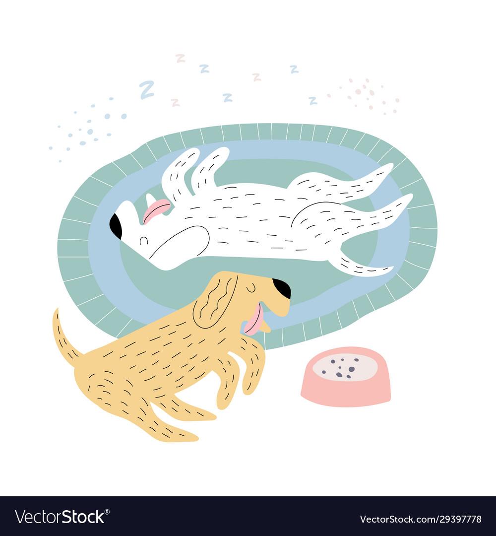 Dogs sleeping on a rug