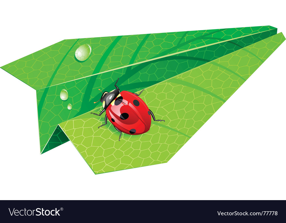 Leaf airplane vector image