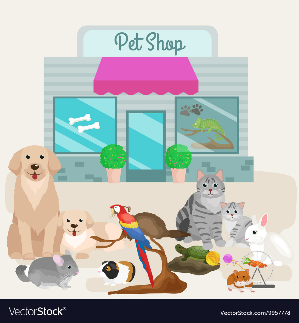 Pet shop accessories and vet store