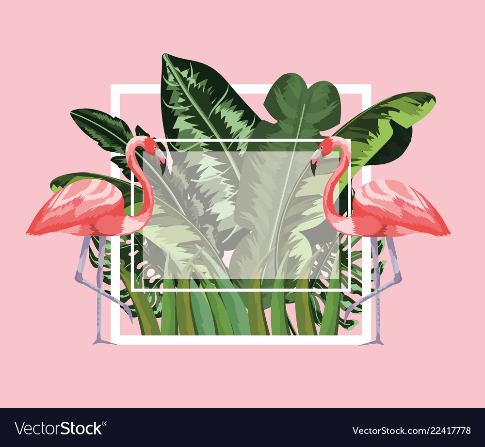 Square frame with flamingos and leaves background
