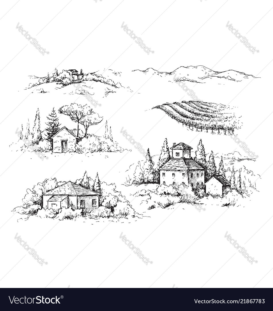 Rural scene with houses vineyard and trees sketch