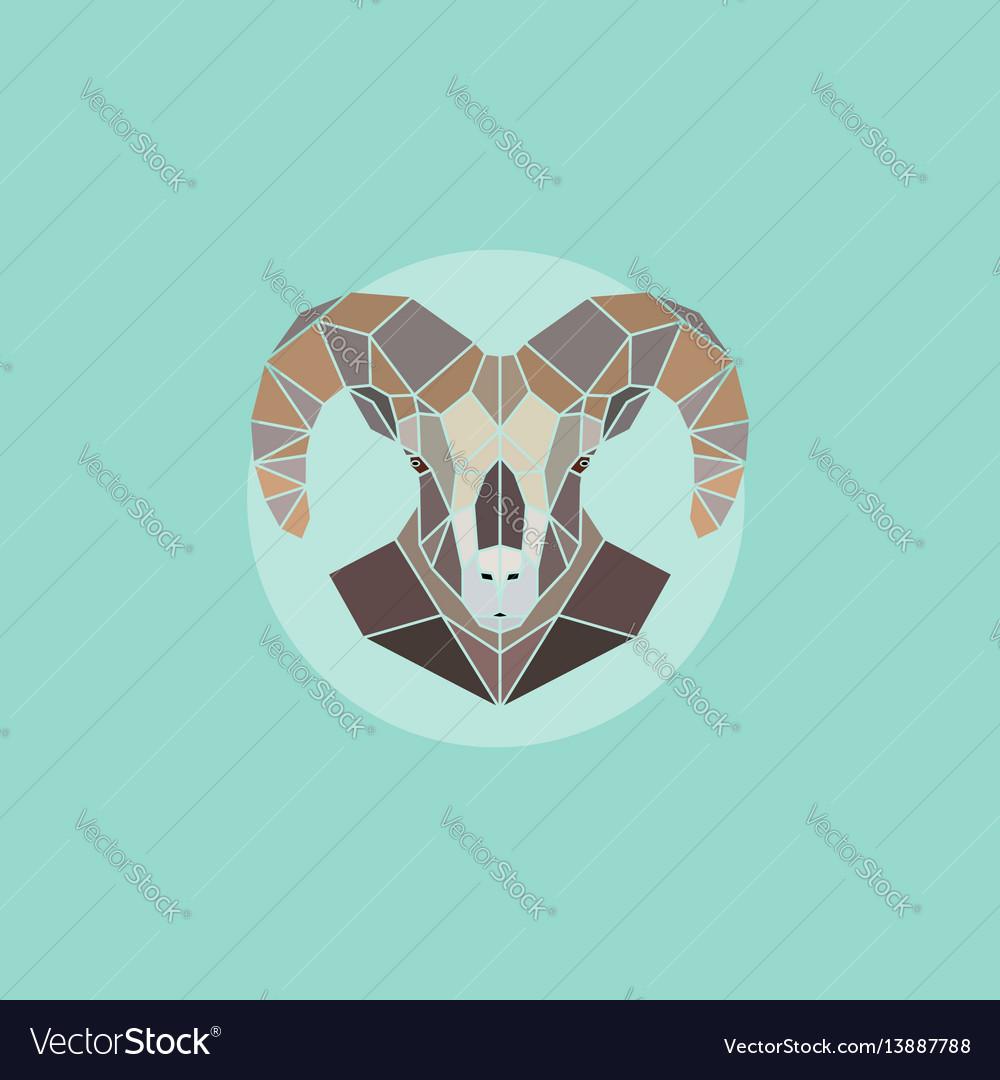 Geometric head mountain sheep