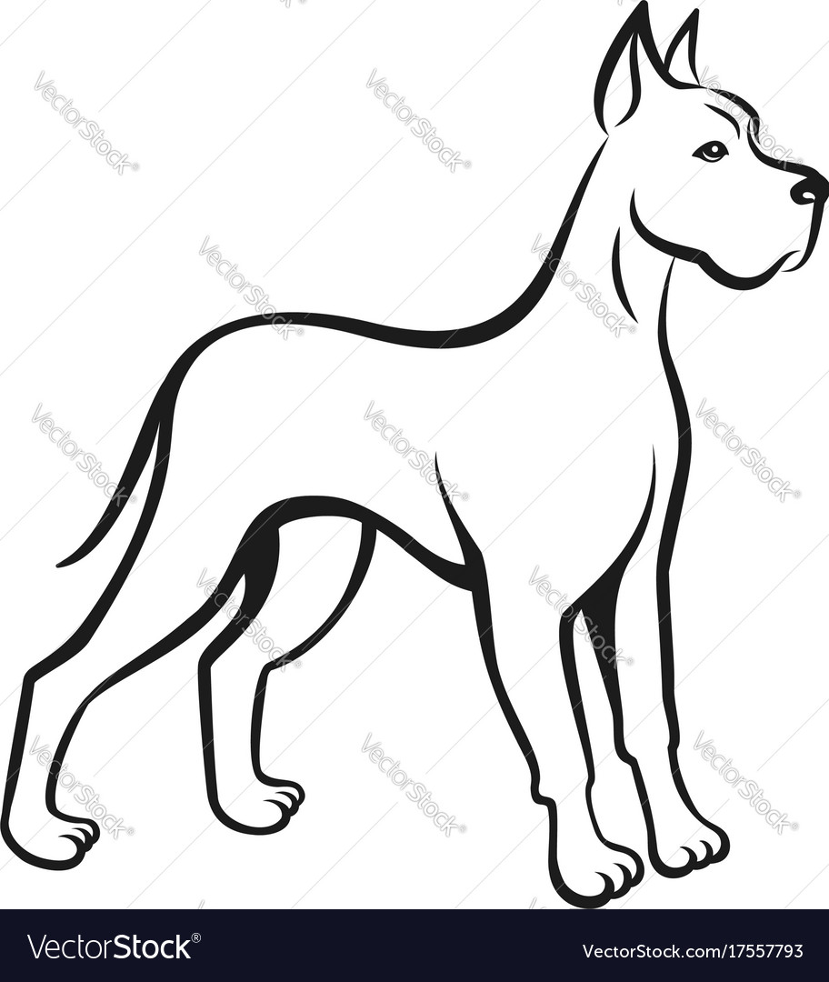 Dog line drawing great dane can be used as logo