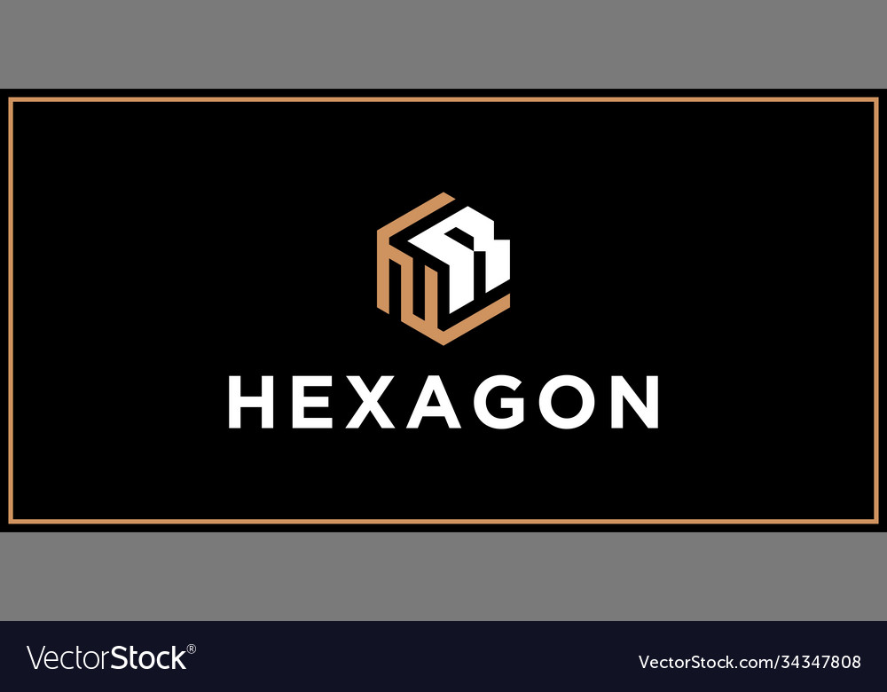 Nr hexagon logo design inspiration vector