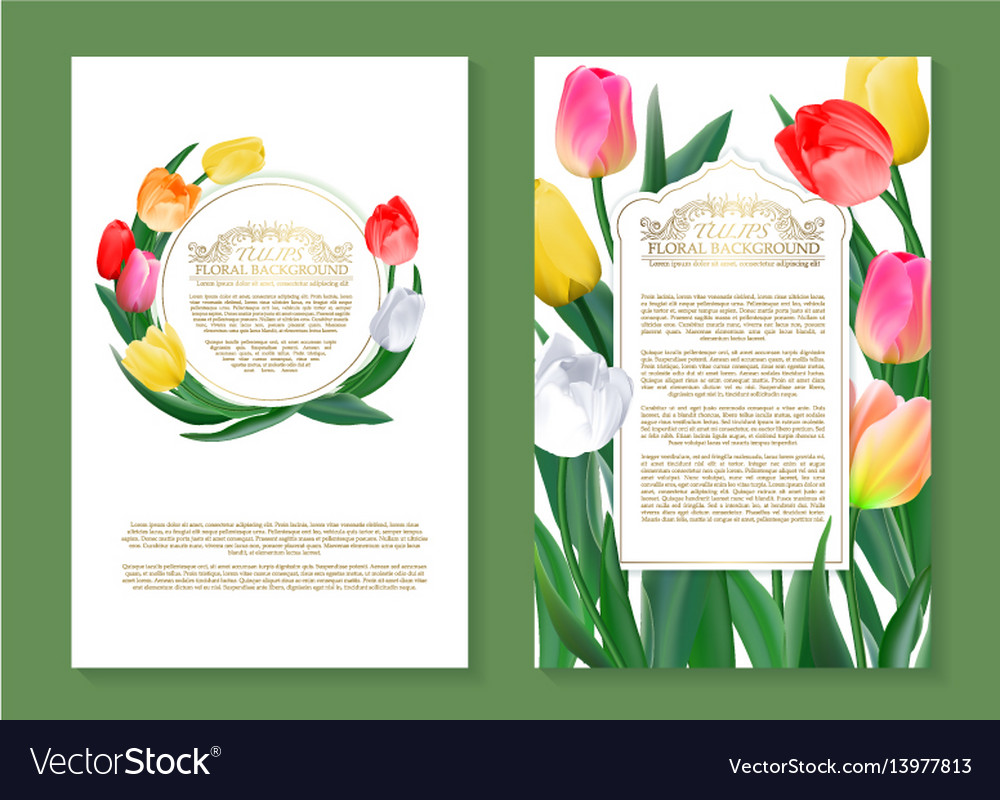 Colorful tulips on two vertical blank banners set