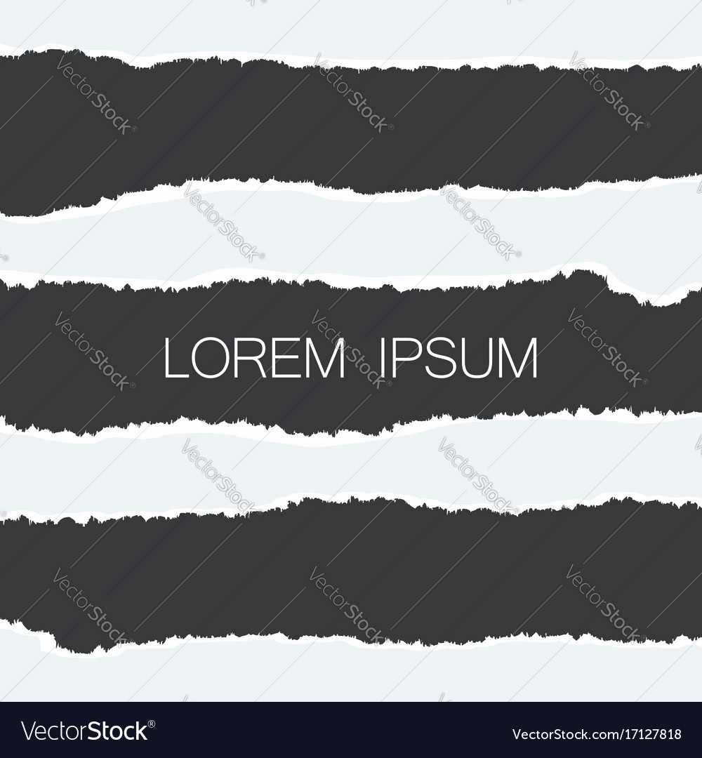Paper with ripped edges realistic set of holes in vector image