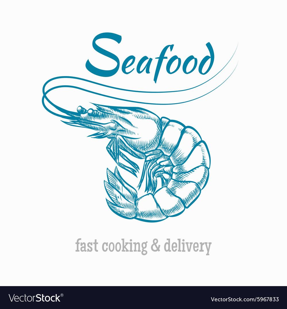 Sketch shrimp seafood logo vector image