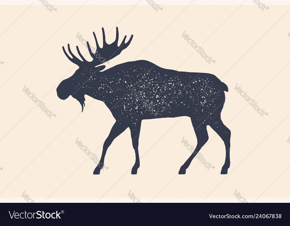 Moose wild deer concept design farm animals