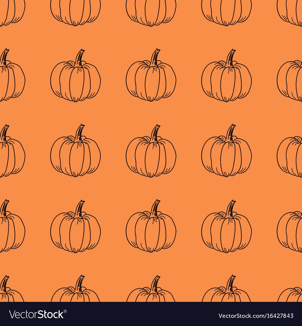 Pumpkin pattern contour graphics on an vector image