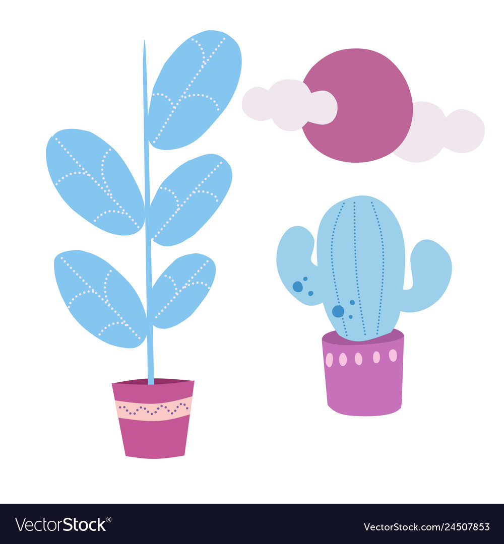 Set of house plants ficus cactus sun
