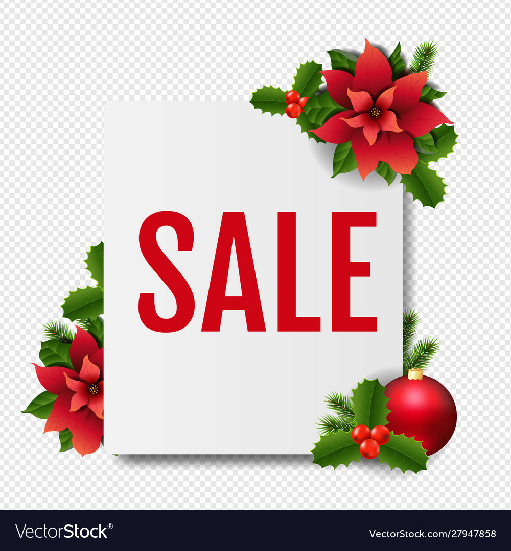 Sale banner with red christmas poinsettia