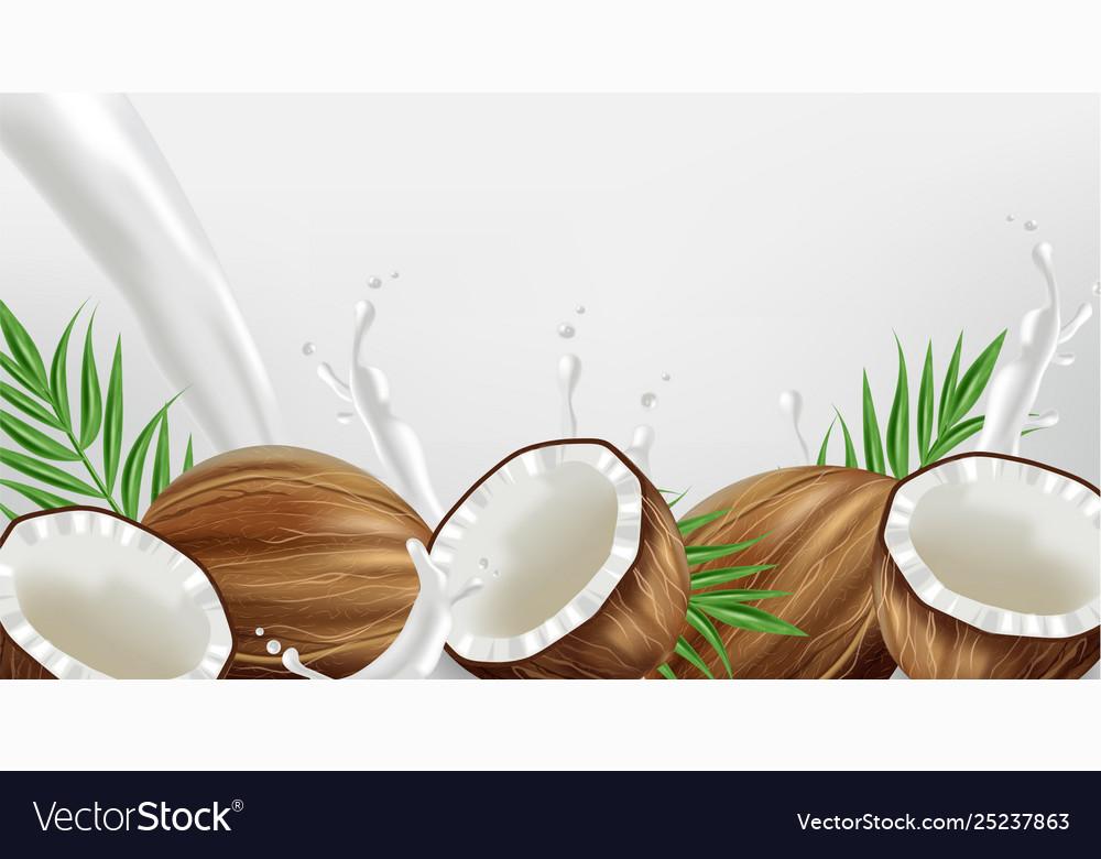 Coconut in milk splash realistic template