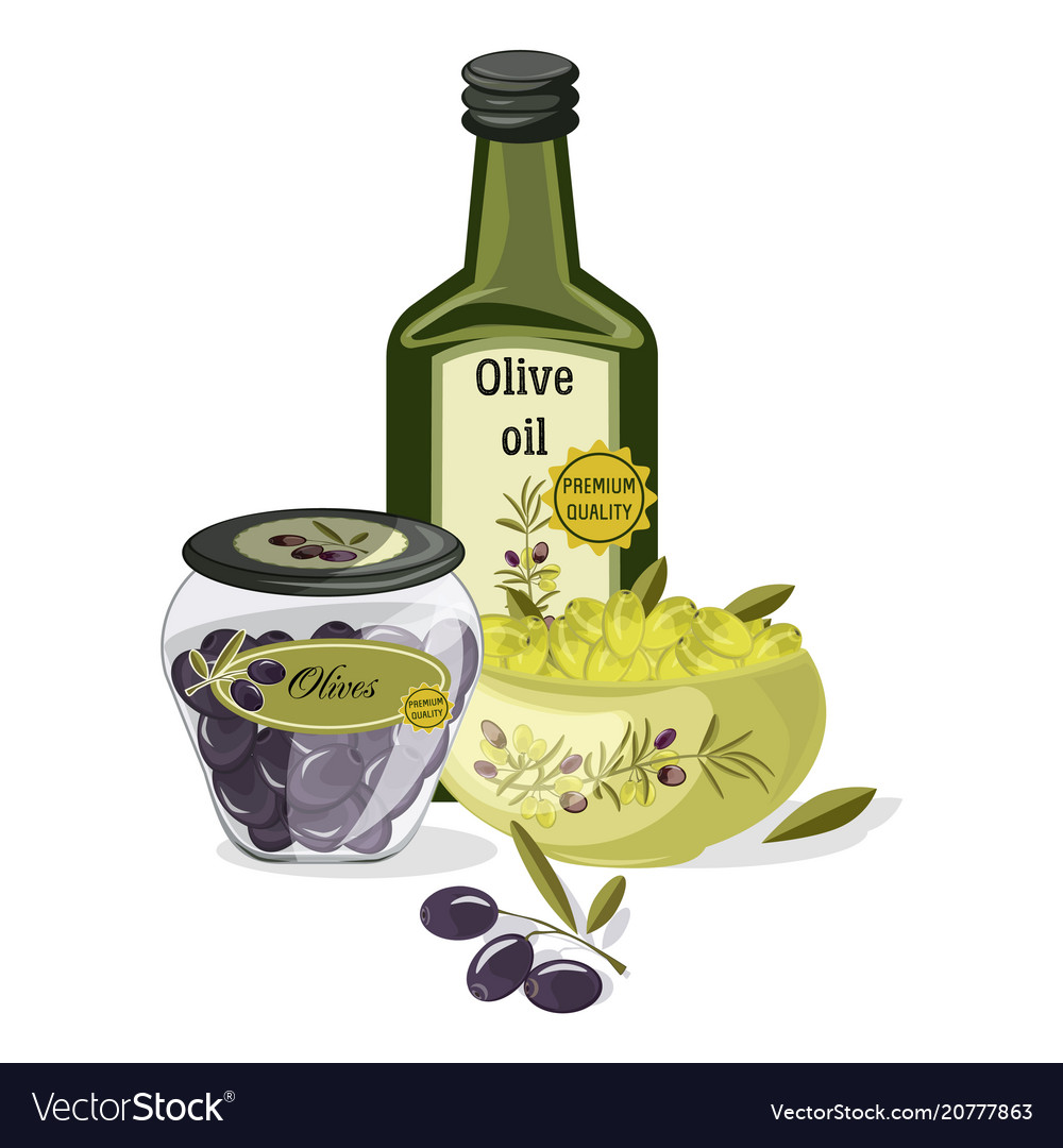 Olive oil products vector image