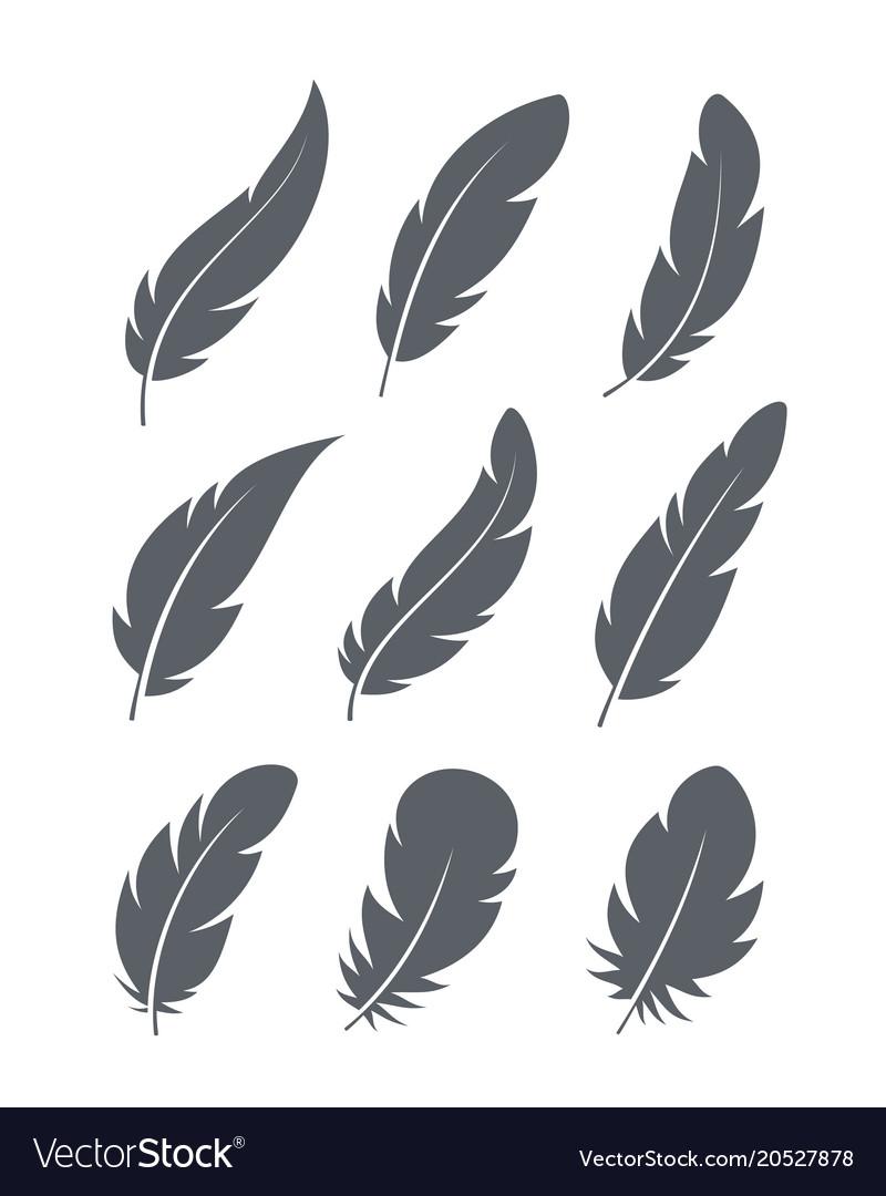 Feathers icons set