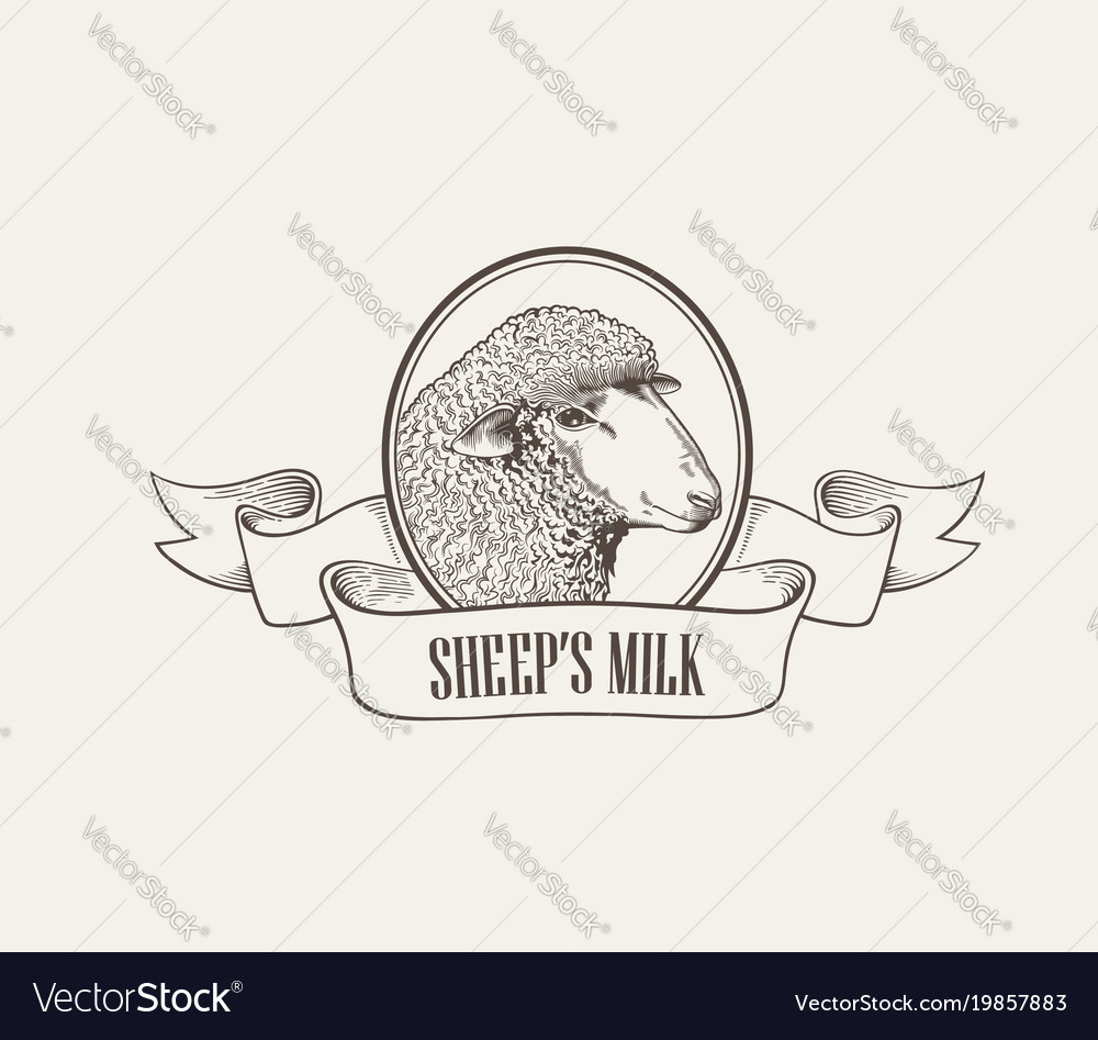 Head of sheep inside round frame decorated with