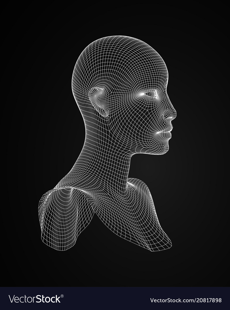 3d head wireframe drawing of wireframe