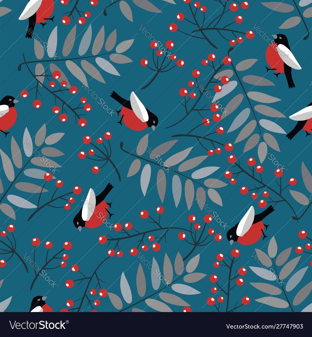 Bullfinch birds berries mountain ash tree and