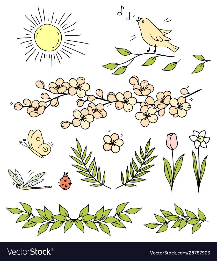 Set flowers branches sun bird butterfly