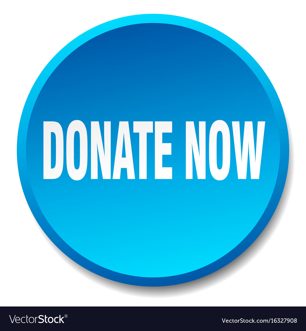 Donate now blue round flat isolated push button