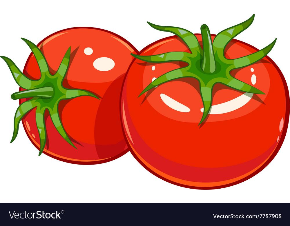Pair red ripe tomato