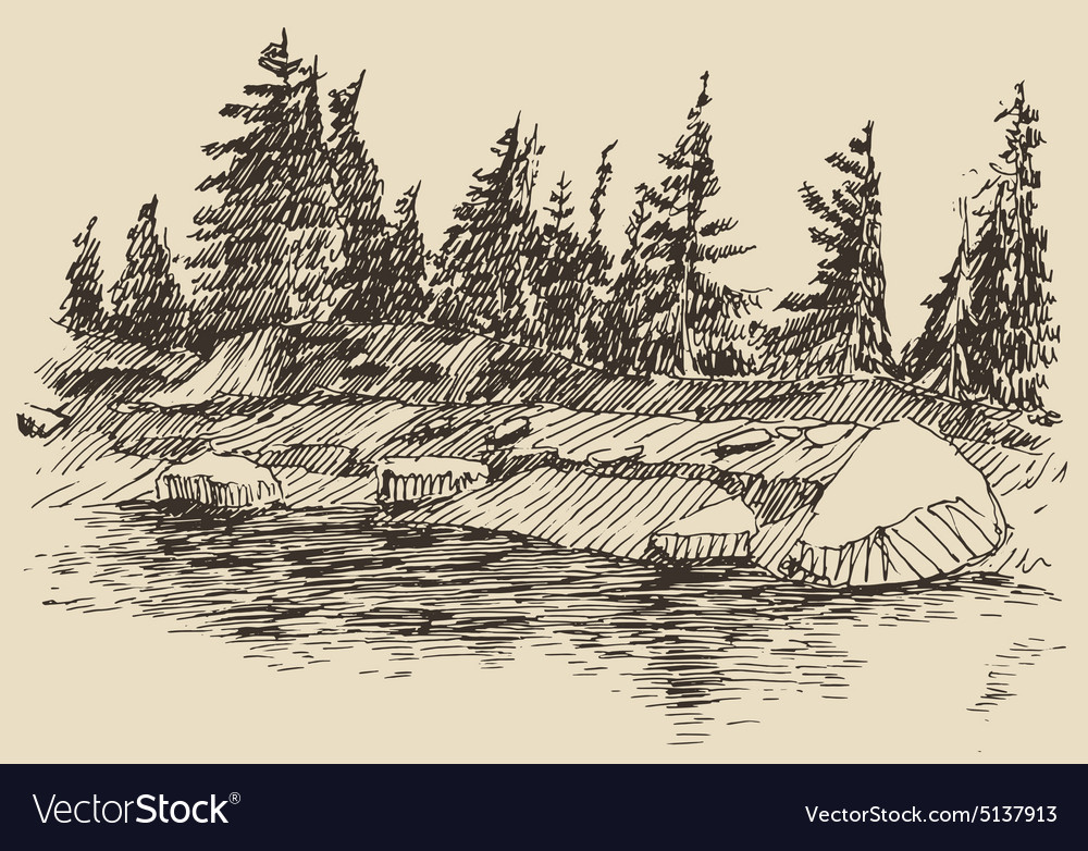Hand drawn landscape lake and fir forest sketch
