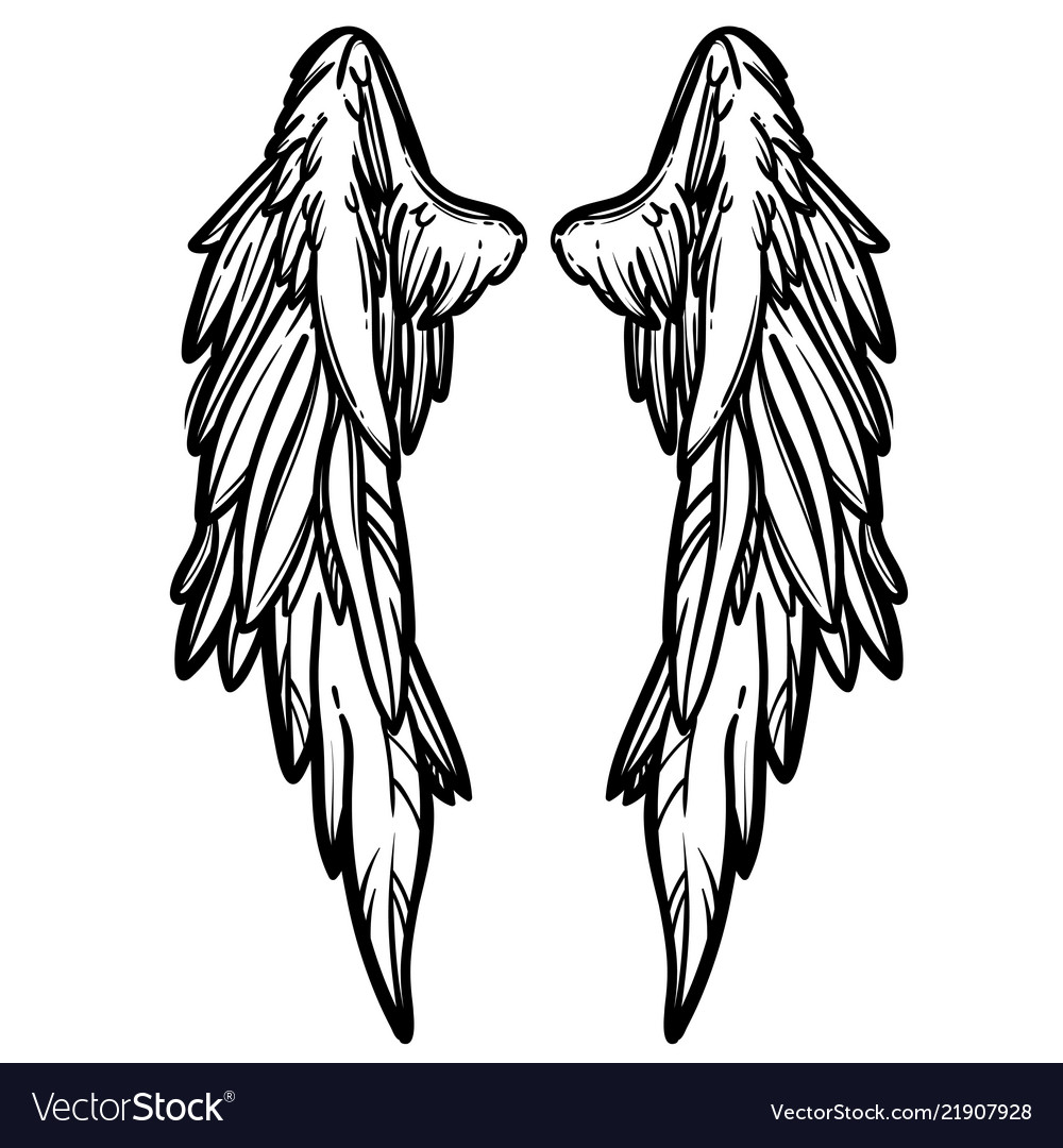 line art of angel wings hand drawn royalty free vector image Anime Wings line art of angel wings hand drawn vector image