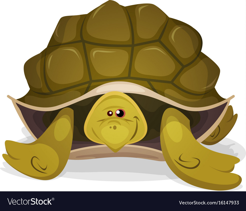 Cute turtle character