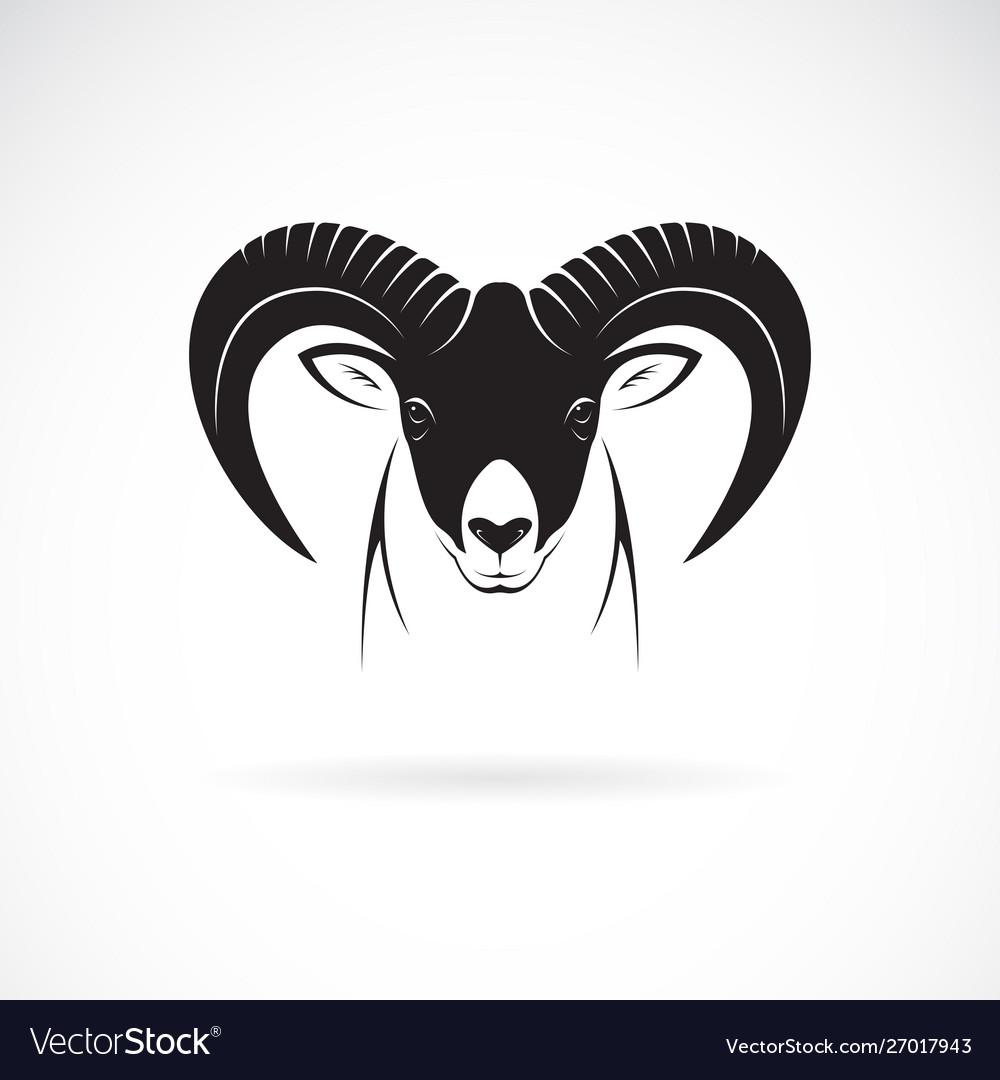 Mountain goat head design on white background
